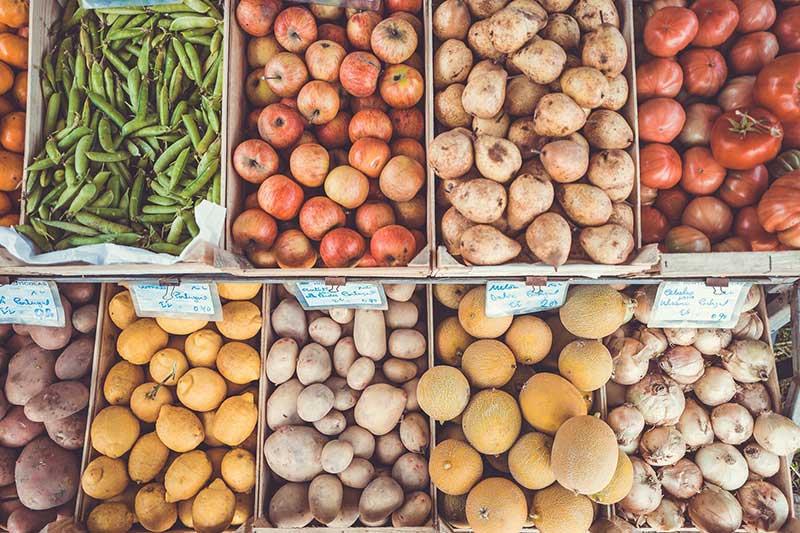 Vegtables Suppliers, Friuts Wholesalers, Fresh Vegetable Exporters